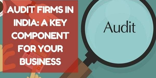 Audit Firms in India: A Key Component for Your Business