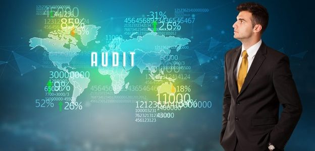 Business Risks: Through the Auditor's Lens